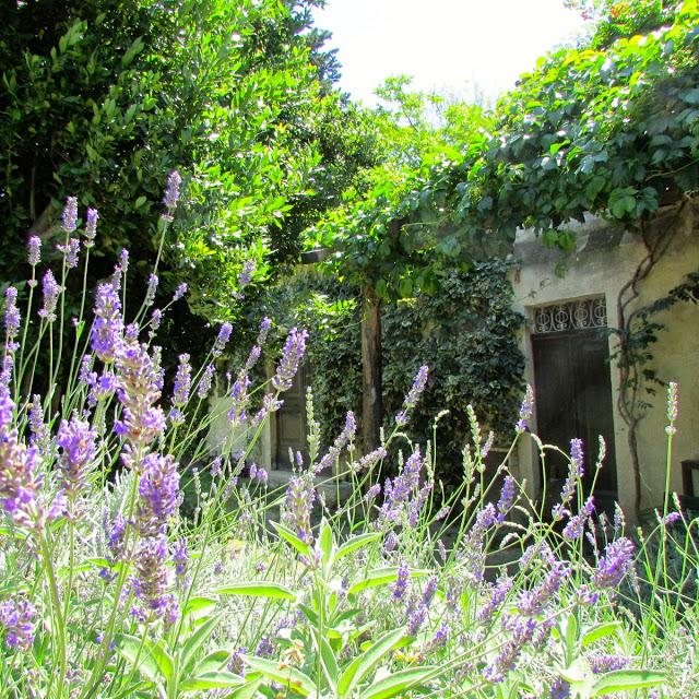 Abruzzo Vakantie Agriturismo Appartement Terras 6 ABV0120D