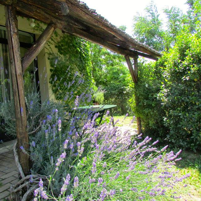 Abruzzo Agriturismo Vakantie Appartement ABV0120E Terras 4