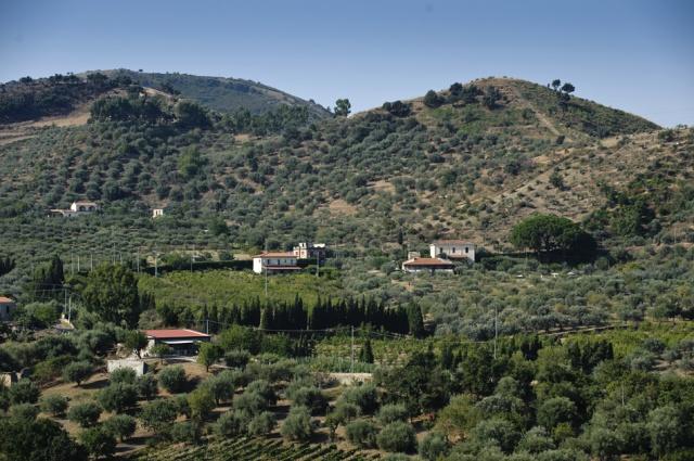 Sicilie Vakanties Agriturismo Met Zeezicht En Zwembad 6