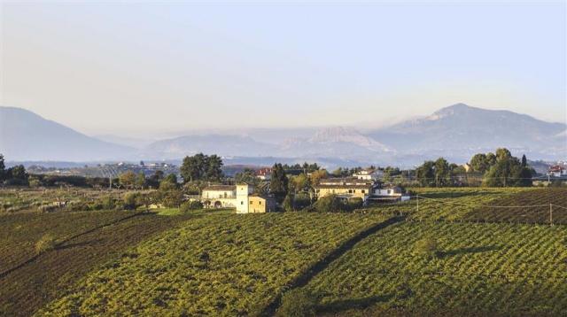 Agriturismo Abruzzo Op 10km Van De Kust 15